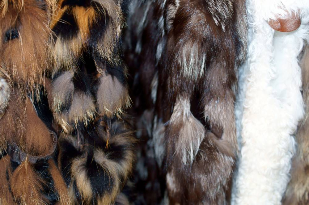 prodotti chimici lavorazione pellicceria
